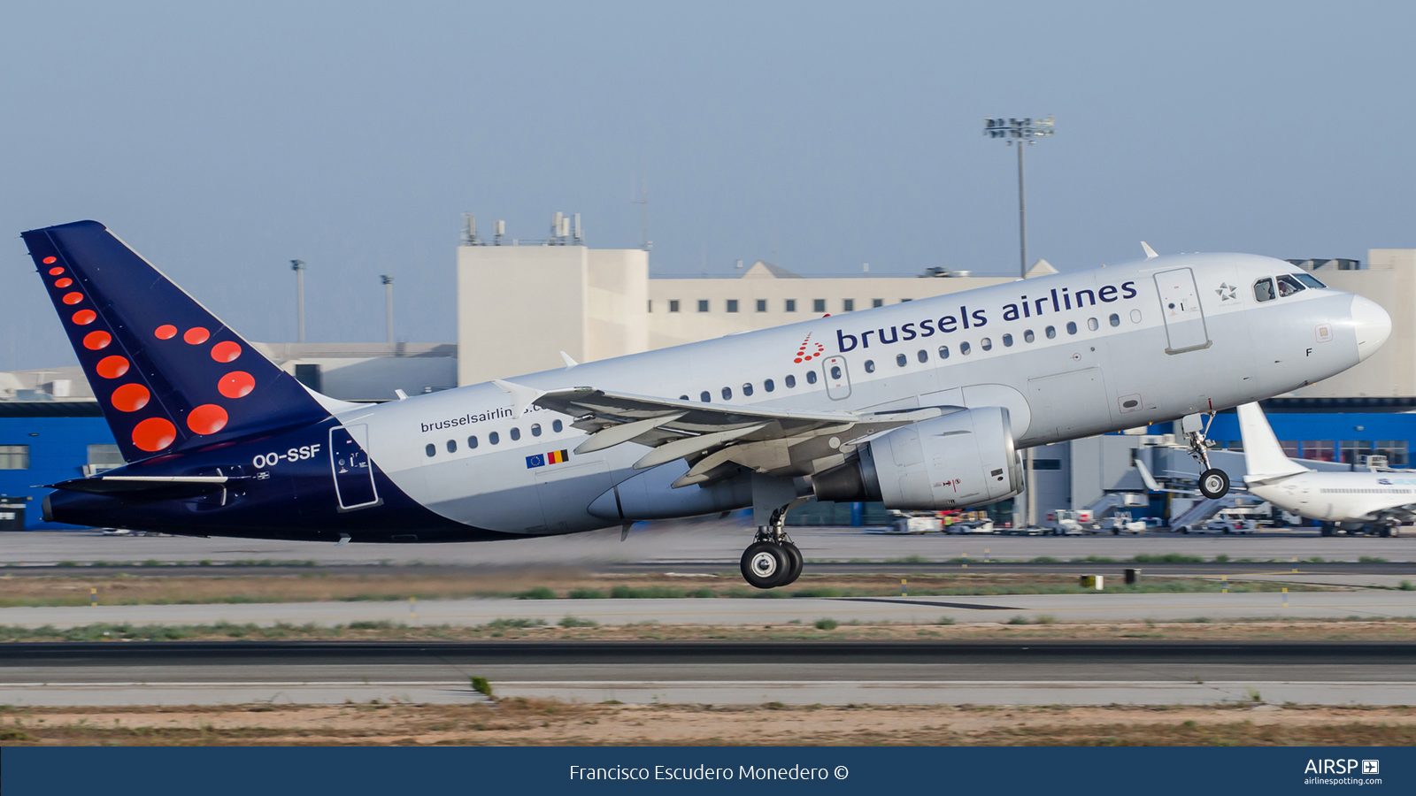 Brussels Airlines  Airbus A319  OO-SSF