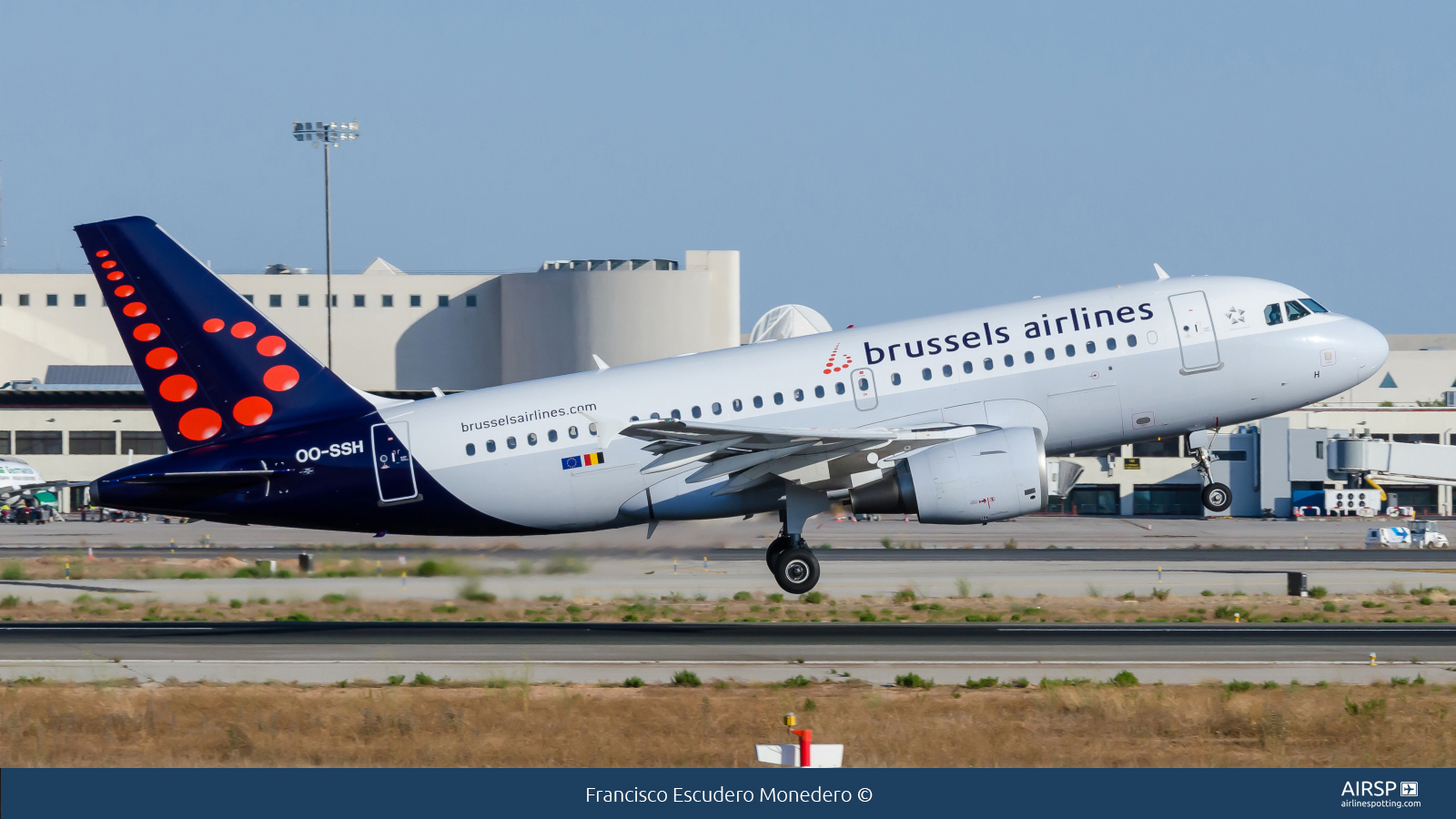 Brussels Airlines  Airbus A319  OO-SSH